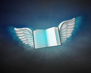 open book with angelic wings flight in dark sky