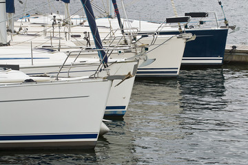 Commercial sail boats
