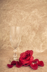 rose in a vase on a artsy background with copyspace