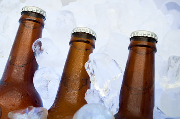 cold beer on crushed ice cubes outside