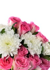 Beautiful bouquet of flowers on a white background