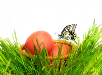 Basket with Easter eggs in a grass