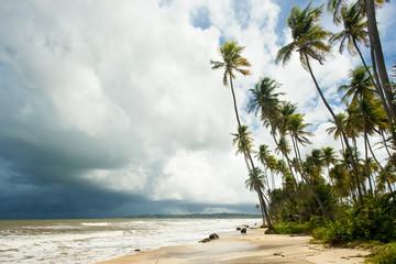 Cocos Bay, Trinidad