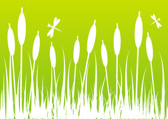 Green bacground for Your design