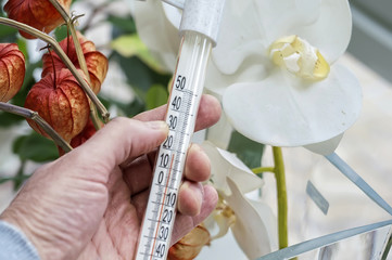 hand holding thermometer