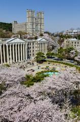 Korea spring