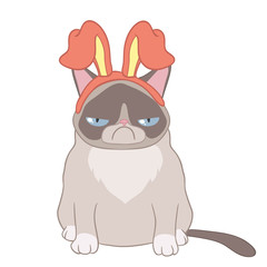 Cat Alya hare ears