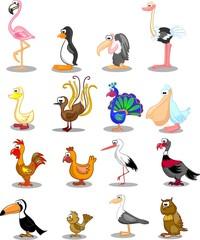 Набор различных птиц