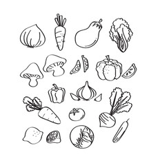 set of vegetable hand draw