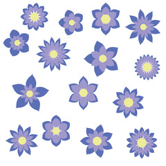 blue flowers with different floral shapes