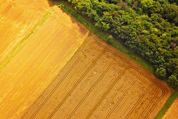 Landwirtschaftliche Anbaufelder und Wald aus der Luft