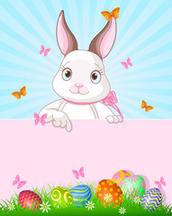 Easter Bunny Design