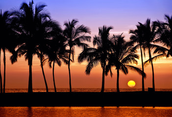 Photo sur Plexiglas Marron chocolat Hawaiian sunset on Big Island, Anaehoomalu Bay
