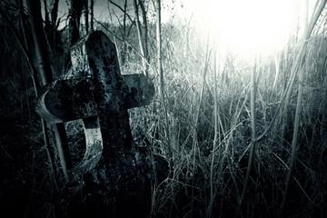 Fototapete - Cemetery night