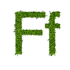 Isolated grass alphabet F
