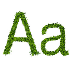Isolated grass alphabet A
