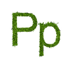 Isolated grass alphabet P