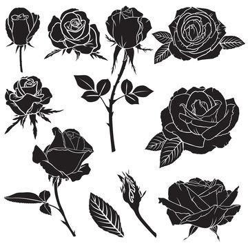 Silhouette lush rose flowers set