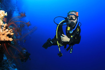 Scuba diver and coral reef underwater