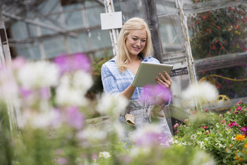 An organic flower plant nursery. A woman working, using a digital tablet.