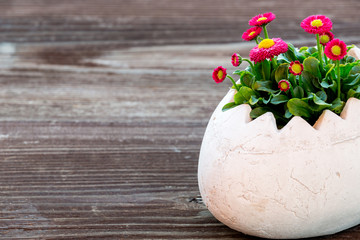 Osterei Vase mit Blumen