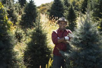 A man wearing a checked shirt and large brimmed hat in a plantation of organic Christmas trees.