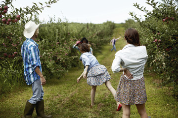 Rows of fruit trees in an organic orchard. A man and three young women throwing fruit at each other.