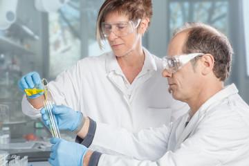 Chemist Teamwork