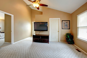 Vaulted ceiling empty room with TV