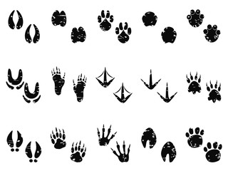 grungy Animal Footprint Track icon