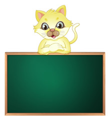 A yellow cat above the empty blackboard