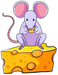 A rat eating above the big slice of cheese
