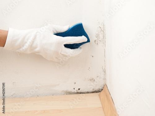 schimmel an der wand entfernen stockfotos und lizenzfreie bilder auf bild 62867041. Black Bedroom Furniture Sets. Home Design Ideas