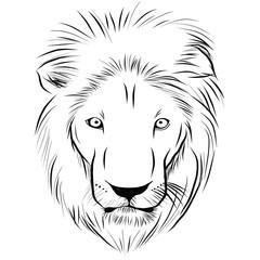 Head of lion hand - drawn