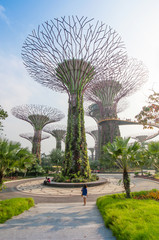 Foto op Plexiglas Singapore Supertree at Gardens by the Bay