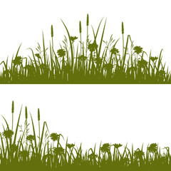 Grass and Wild flowers silhouette background