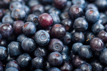 Fresh ripe blueberry background