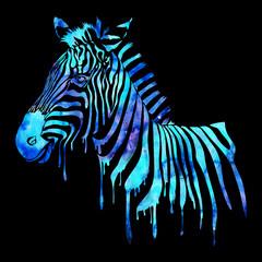 Watercolor zebra head - abstract animal illustration, black