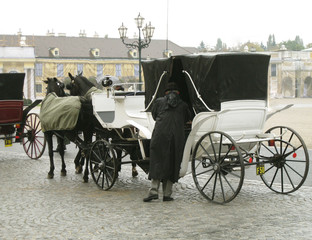 Man  sitting down in the carriage horses. Retro photo