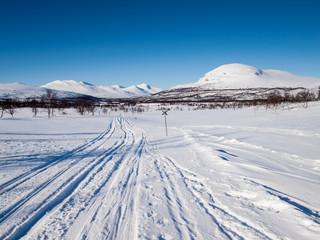 ski tracks in nordic winter landscape