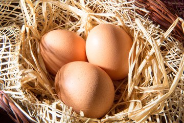 eggs in the straw and basket