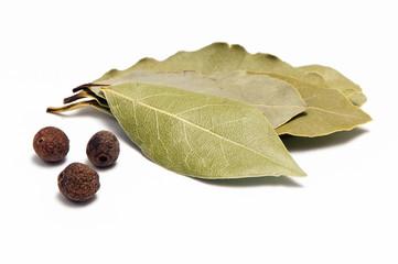 Fototapeta Allspice and bay leaf obraz