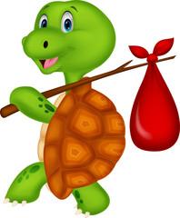 Turtle traveling