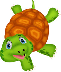 Cute turtle cartoon standing with hand