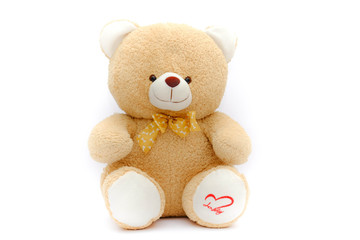 lonely brown bear doll  on isolated background
