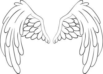 Flügel abgerundet Lineart