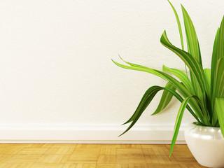 a plant on the floor,
