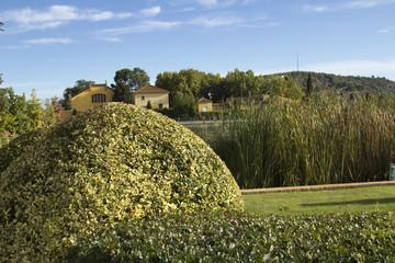 Landscape.Spain.