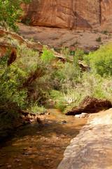 negro Bill Trail Head, Moab