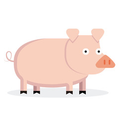 Cute Cartoon Pig Isolated On White Background